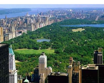Central Park Parking