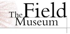 Field Museum chicago parking