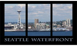 Central Waterfront Logo